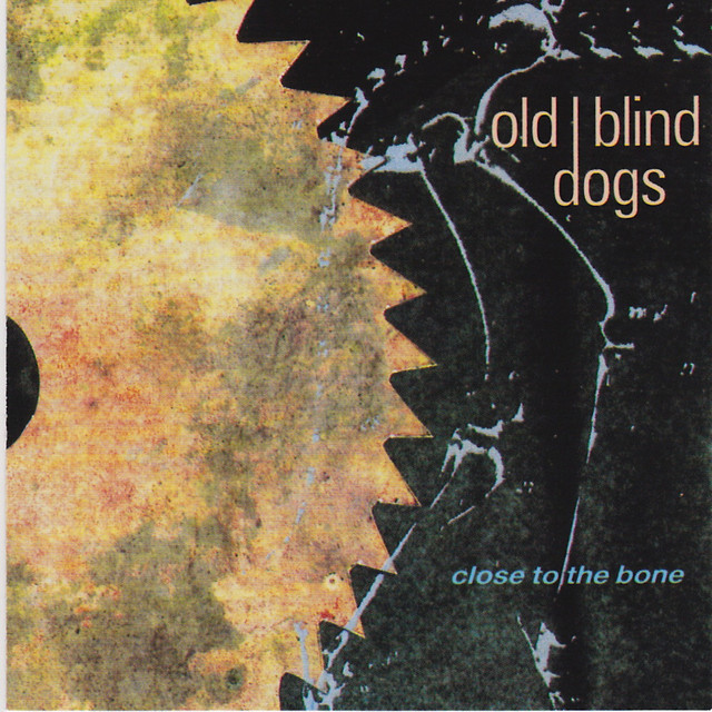 Old Blind Dogs