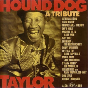 Hound Dog Taylor - A Tribute