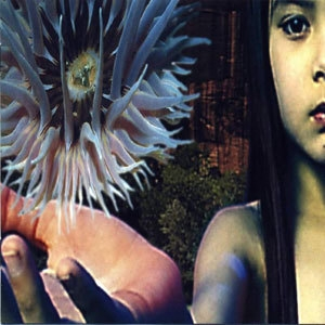 Lifeforms (CD2)