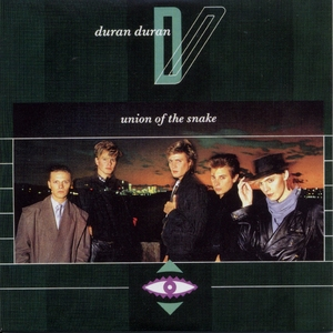 Singles Boxset 1981-1985: 09. Union Of The Snake