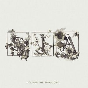 Colour The Small One (US Release)