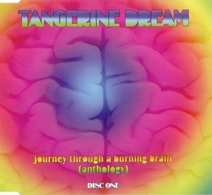 Journey Through A Burning Brain (CD1)