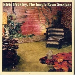 The Jungle Room Sessions