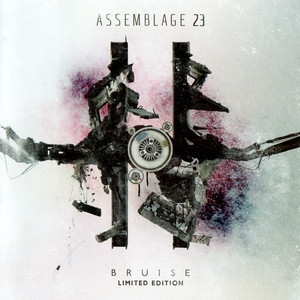 Bruise (limited Bonus Cd)