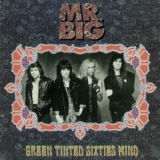 Mr. Big - Green Tinted Sixties Mind '1990