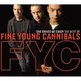 Fine Young Cannibals - She Drives Me Crazy - The Best Of... '2008