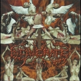 Incinerate - Dissecting The Angels '2002