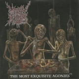 Mindly Rotten - The Most Exquisite Agonies '2005