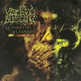 Visceral Bleeding - Absorbing The Disarray '2007