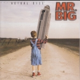 Mr. Big - Actual Size '2001