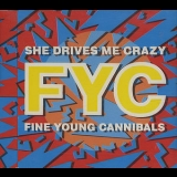 Fine Young Cannibals - She Drives Me Crazy (CDS) '1989