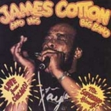 James Cotton - Live From Chicago--Mr. Superharp Himself '1986