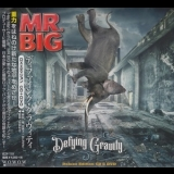 Mr. Big - Defying Gravity '2017