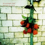 The Pineapple Thief - Variations On A Dream  '2011