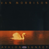 Van Morrison - Avalon Sunset '1989