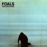 Foals - What Went Down '2015