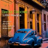 Senor Groove - Little Havana '2019