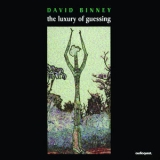 David Binney - The Luxury Of Guessing '1995