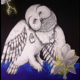 Songs: Ohia - The Magnolia Electric Co. (10th Anniversary Deluxe Edition) (2CD) '2013
