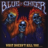 Blue Cheer - What Doesn't Kill You... '2007