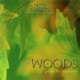 Dan Gibson's Solitudes - Whispering Woods (guitar For Relaxation) '1997