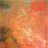 Morbid Angel - Blessed Are the Sick (Japanese Edition) '1991