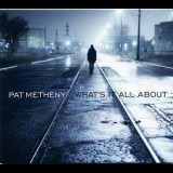 Pat Metheny - Whats It All About '2011