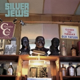 Silver Jews - Punks In The Beerlight '2005