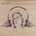 David Sylvian - Died In The Wool '2011