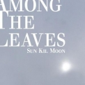Sun Kil Moon - Amoung The Leaves (2CD) '2012