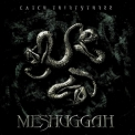 Meshuggah - Catch Thirtythree '2005