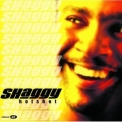 Shaggy - Hot Shot (special Edition) '2001