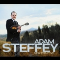 Adam Steffey - New Primitive '2013