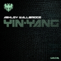 Ashley Wallbridge - Yin-Yang [web] '2013