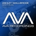 Ashley Wallbridge - Shotokan [web] '2009