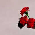 John Legend - Love In The Future (deluxe Edition) '2013