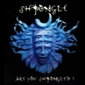 Shpongle - Are You Shpongled? '1998