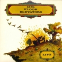 13th Floor Elevators - Live '1968