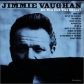 Jimmie Vaughan - Do You Get The Blues? '2001