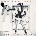 Godley & Creme - Birds Of Prey '1983