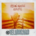 Yellowcard - Ocean Avenue Acoustic '2013