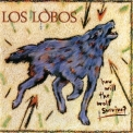 Los Lobos - How Will The Wolf Survive? '1984