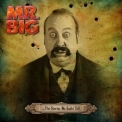 Mr. Big - The Stories We Could Tell '2014