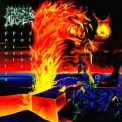 Morbid Angel - Formulas Fatal To The Flesh '1998