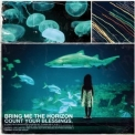 Bring Me The Horizon - Count Your Blessings '2006