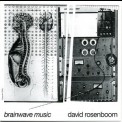 David Rosenboom - Brainwave Music '2006
