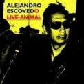 Alejandro Escovedo - Live Animal '2008