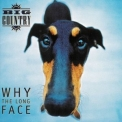 Big Country - Why The Long Face '1995