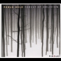 Pablo Held - Forest Of Oblivion '2008