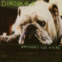 Dinosaur Jr. - Whatever's Cool With Me '1991